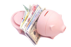 Pink piggy bank with international banknotes money. Isolated on white Stock Photos