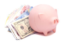 Pink piggy bank with international banknotes money. Isolated on white Stock Photography