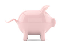 Pink piggy bank isolated on white Stock Images