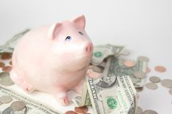 Pink Piggy Bank With Money Royalty Free Stock Images
