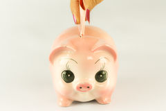 Pink Piggy Bank With Money. Stock Image