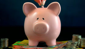 Pink Piggy bank money concept on dark blue background. With Australian money, and female hand inserting one coin, closeup Stock Image