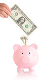 Pink piggy bank  with money Stock Photos