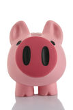 Pink Piggy Bank (moneybox). Isolated on white Stock Image