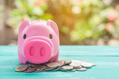Pink piggy bank over coins stack, saving money. Concept stock image