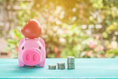pink piggy bank over coins stack, saving money Stock Photography