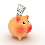Pink piggy bank with pack of dollars. Stock Photo