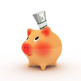 Pink piggy bank with pack of dollars. Royalty Free Stock Photography