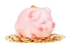 Pink piggy bank on pile of coins. Stock Image