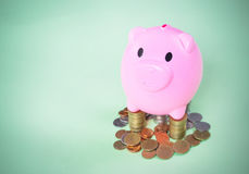 Pink Piggy bank. On green background. Piggy coin bank for money savings Royalty Free Stock Photos