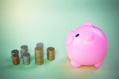 Pink Piggy bank. On green background. Piggy coin bank for money savings Stock Photo