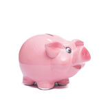 Pink piggy bank for precaution. Pink piggy bank for financial precaution Stock Image