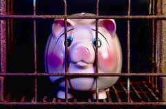 Pink Piggy Bank Punishment. Stock Images