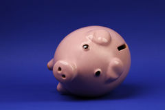 Pink piggy bank recumbent on blue background Stock Photo