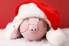 Pink piggy bank with Santa hat with pompom and glasses standing on white snow on red background Royalty Free Stock Image