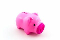 Pink piggy bank saving. Stock Photos