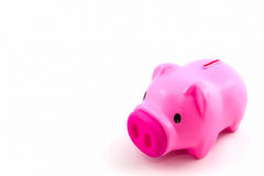 Pink piggy bank saving. Stock Photo