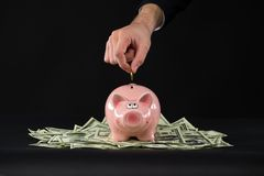 Pink piggy bank standing on dollars. Stock Photos