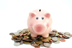Pink piggy bank standing on a pile of coins and bills, suggesting money savings concept Royalty Free Stock Image