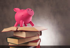 Pink piggy bank standing on top of  books Royalty Free Stock Photos