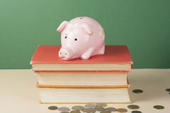 Pink Piggy bank top on books. Costs of education Concept.  Stock Photos