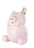 Pink Piggy Bank With Twenty Dollar Bill. Happy looking piggy bank seems ecstatic over gaining a 20 dollar bill. Concept indicating happiness over saving money royalty free stock photos