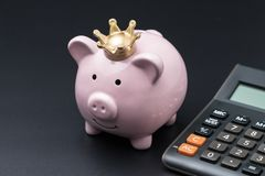 Pink piggy bank wearing golden crown with calculator using as sa. Ving money, finance calculate tax, investment or debt Stock Photography