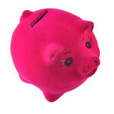 Pink piggy bank on a white Royalty Free Stock Photos