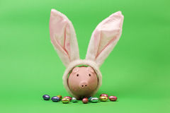 Pink piggy bank with white rabbits ears and chocolate easter eggs on green background. Horizontal Royalty Free Stock Photos