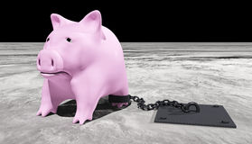 Pink piggy is chained Stock Photography