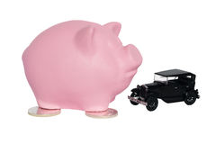 Pink piggy pig with a car near Royalty Free Stock Photography