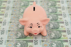 Piggy with money Stock Photos