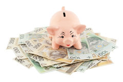 Piggy with money. Pink piggy on polish money as background Stock Photo