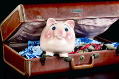 Pink Piggy on Vacation. Royalty Free Stock Photos