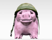 Pink Piggy Wants To Give Orders Royalty Free Stock Images