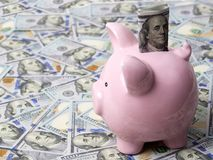 Pink piggybank with American dollars Stock Images
