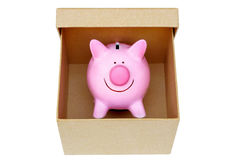 A pink piggybank. In a cardboard box Stock Photography