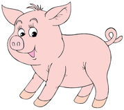 Pink piglet Royalty Free Stock Photography