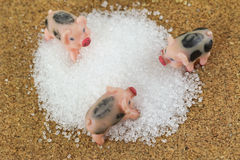 Pink pigs with black spots climbing on a heap of white sugar Stock Photo