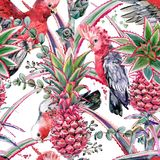 Pink pineapple, parrot hand drawn watercolor seamless pattern. Pink pineapple, pink cockatoo parrot hand drawn watercolor seamless pattern stock illustration