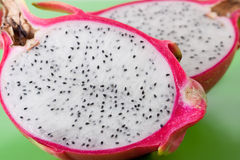 Pink pitahaya Stock Photography