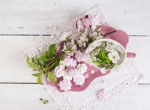 Pink plate with meringue and branches of cherry blossoms Stock Photos