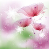 Pink poppies. Illustration, contain gradient mesh, eps-10 Royalty Free Stock Photo