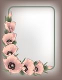 Pink poppies floral frame, vector Royalty Free Stock Photography