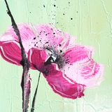 Pink poppy on light green Royalty Free Stock Photography