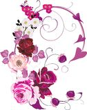 Pink poppy and rose decoration vector illustration