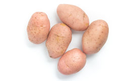 Pink Potato. Asterix Stock Photography