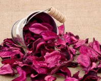 Pink potpourri Royalty Free Stock Photos