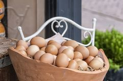 Pottery basket filled with eggs stock images