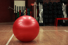 Pink power ball in gym Stock Image